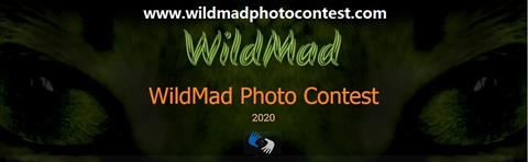 Take part with your images certified by IRCC in WILDMAD Photo Contest